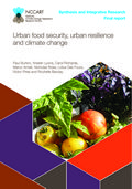Urban food security, urban resilience and climate change