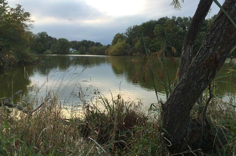 'Save Green Pond' project takes over