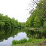 Gedney Park