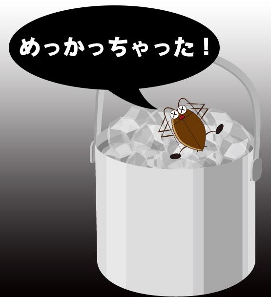大船串べえゴキブリ