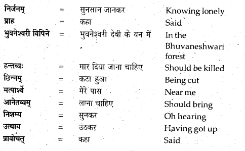 NCERT Solutions for Class 12 Sanskrit Bhaswati Chapter 7 नैकेनापि समं गता वसुमती 6
