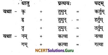 NCERT Solutions for Class 8 Sanskrit Chapter 8 संसारसागरस्य नायकाः Q6.1