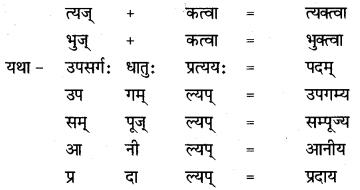 NCERT Solutions for Class 8 Sanskrit Chapter 8 संसारसागरस्य नायकाः Q6.2