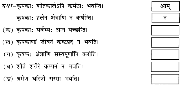 NCERT Solutions for Class 6 Sanskrit Chapter 10 कृषिकाः कर्मवीराः 2