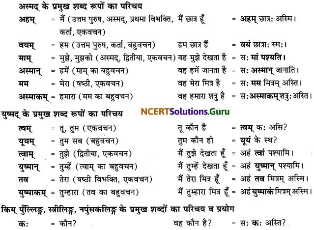 Class 6 Sanskrit Grammar Book Solutions सर्वनाम संख्यावाचक शब्दरूपाणि 1
