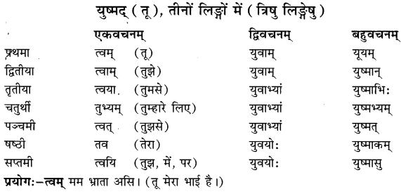 Class 6 Sanskrit Grammar Book Solutions सर्वनाम संख्यावाचक शब्दरूपाणि 14