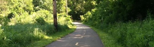 Renee's Path
