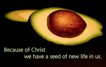 the seed within us