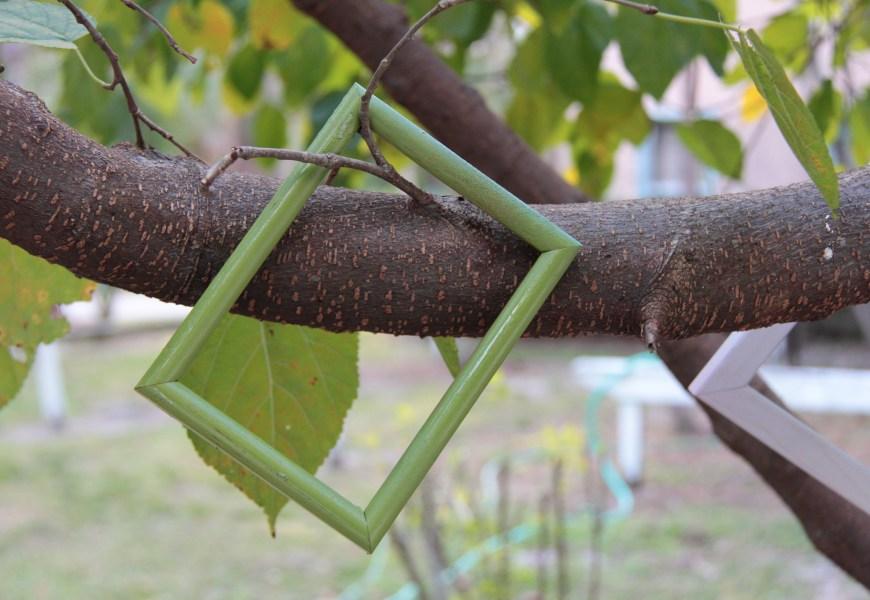 Organic Gardening Tutorial looks back on semester