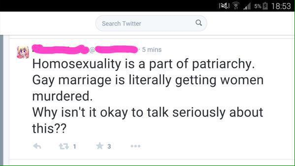 Feminist Hate of Gay Men 2