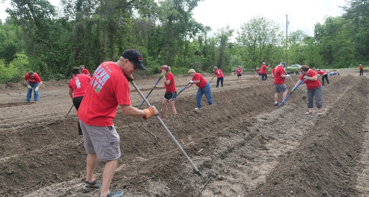 Veterans Healing Farm In NC Looking For Volunteers