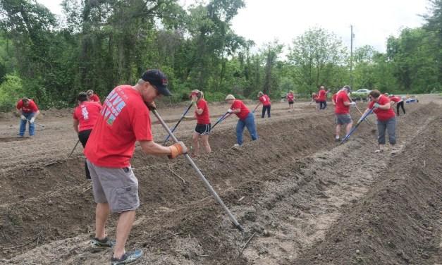 Veterans Healing Farm In NC Looking For Volunteers