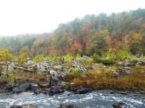 Haw Autumn 5