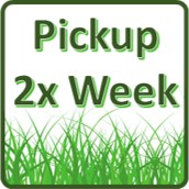 2x per week (8 visits per month)