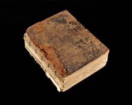 Caswell Bible