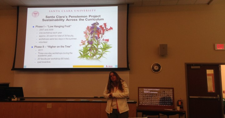 Amy Shachter discussing how Santa Clara University incorporates sustainability across its curriculum.