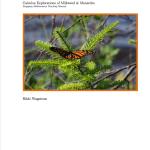 Calculus Explorations of Milkweed & Monarchs