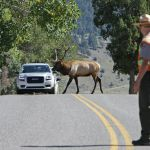 """""""Is Ecotourism Helping or Hurting our National Parks?"""" Photo Credit: Jim Peaco"""