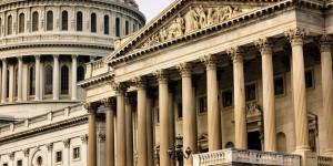 STEM and Politics Webinar