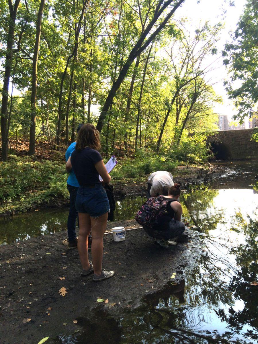 Fieldwork Photo Contest Submission - Lisa Lobel