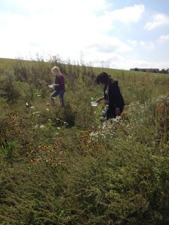 Fieldwork Photo Contest Submission - Virginia McHugh Kurtz