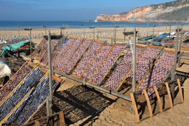 Povos Antigos e o legado deixado aos portugueses
