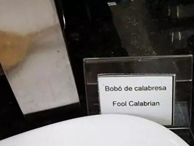 Traduções que correram mal