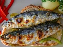 O melhor peixe do mundo é português