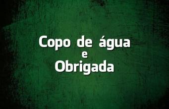Língua Portuguesa: «Copo de água» e «Obrigada» são erros?