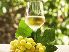 dez melhores vinhos brancos