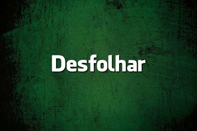 erros de português que arruínam