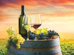 tudo sobre Vinho Tinto