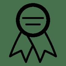 Premium WordPress Websites