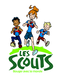 scouts 199 253