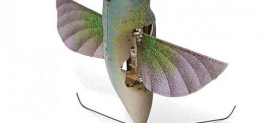 Robot Burung Kolibri