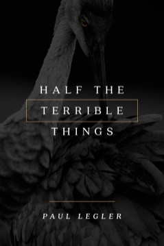 HalfTerribleThings-3