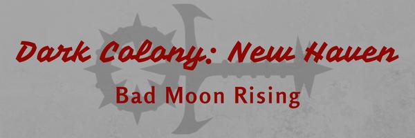 dark-colony-new-haven