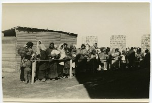 A group of refugees waiting in line