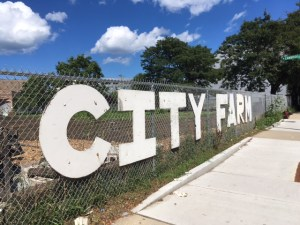 City Farm Sign