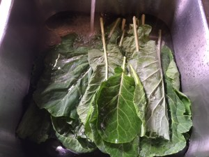 Washing Collards