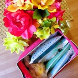 Makeup bag with Ziploc Bags