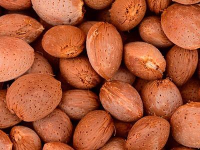 Aceite vegetal de Almendra: Prunus Amygdalus Dulcis Oil