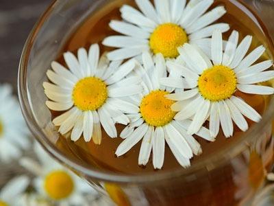 Aceite esencial de manzanilla romana: Chamomilla Recutita Essential Oil