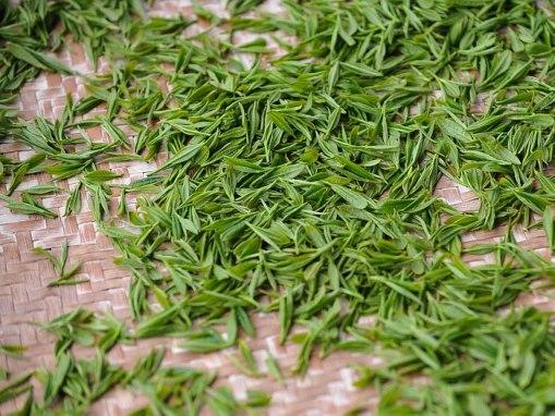 Hidrolato de Té verde: Camellia sinensis water