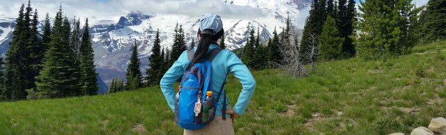 NeatPack backpack