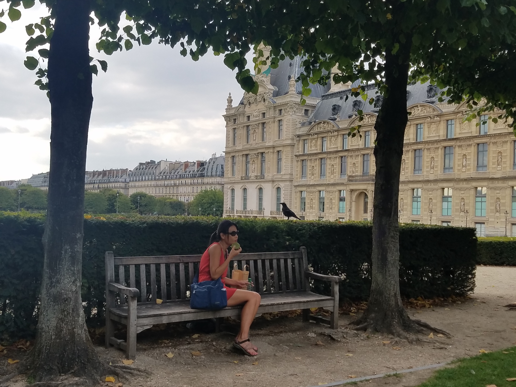 neatpack crossbody bag Enjoying macaroon at park bend by The Louvre