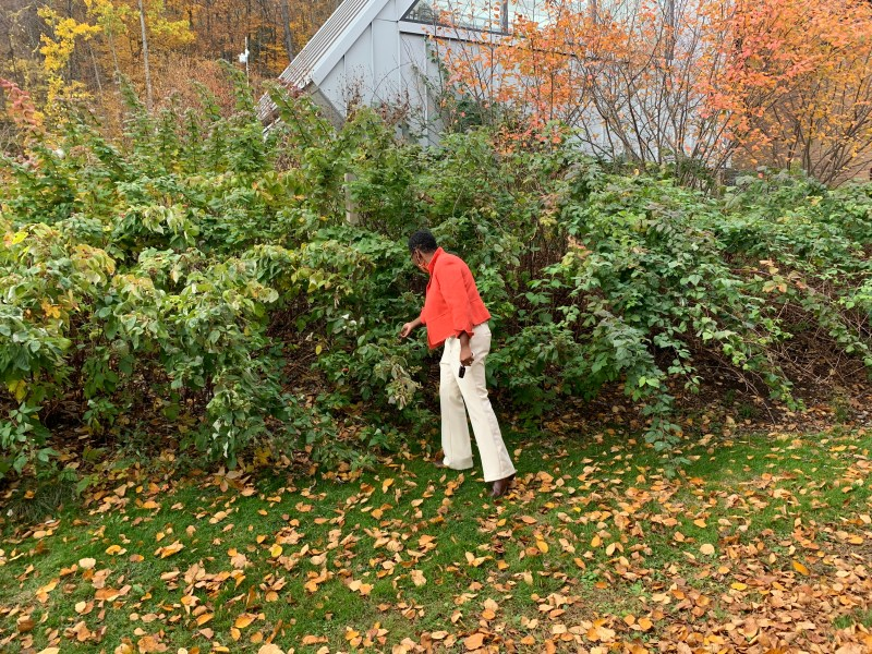 President Yves Solomon-Fernandez checking out a hedge
