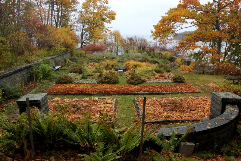 ocean garden at COA