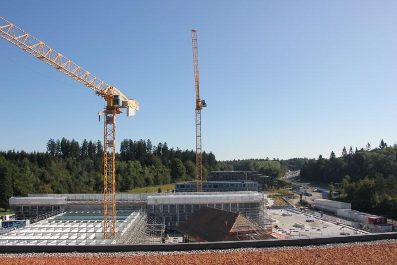cranes & buildings