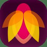 Flare Effects | 写真アプリから多彩なフィルターを追加できるMac版連携の無料エクステンション